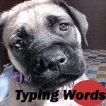 Typing Words -- More Challenging!