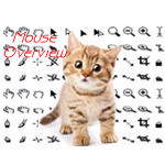 Learn Mousing From A Kitten