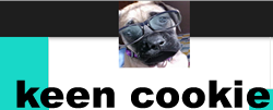 keen cool cooking games