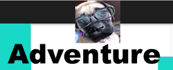 long adventure multi level